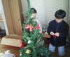 1tree20081119